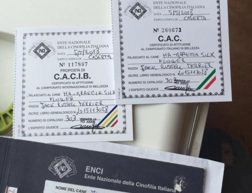 Esposizione Internazionale di CASERTA (CE) in Ercolano (Complesso Zeno) del 05 Maggio 2018, Giudice Sig.Jean-Francois Vanaken